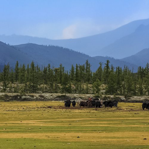Central Mongolia Tour package